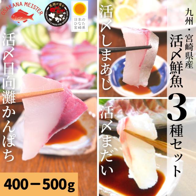 【送料無料】活〆鮮魚3種セット 約400-500g(柵)/日向灘かんぱち・真鯛・しまあじ