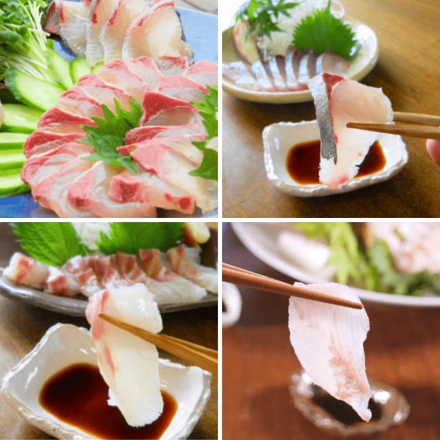 活〆鮮魚少量4種カンパチ・タイ・ヒラメ・シマアジセット