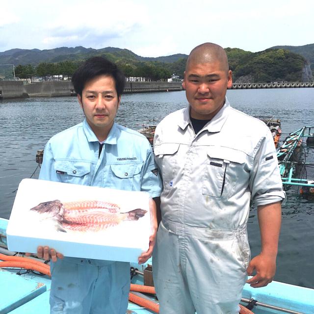 真鯛姿造り生産者