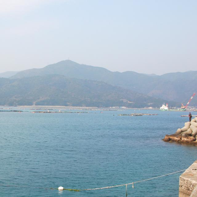 真鯛が育つ宮崎県の日向灘