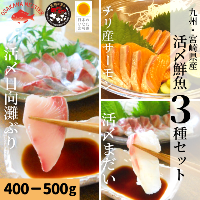 【送料無料】活〆鮮魚3種セット 約400-500g/日向灘ぶり・真鯛・サーモン