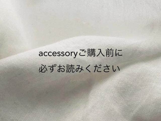 accesoryご購入前にお読みください