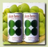【紀南では昔から愛飲されている昔ながらのジュース】プラムハニップC(190g缶)×30入