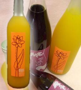 人気の梅酒 話題のマンゴと梅酒のコラボ フルフルマンゴ梅酒 720ml