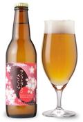 まさしく桜餅のビア・・・きっとリアリティーな味わいに笑っちゃいます。サンクトガーレン さくら330ml
