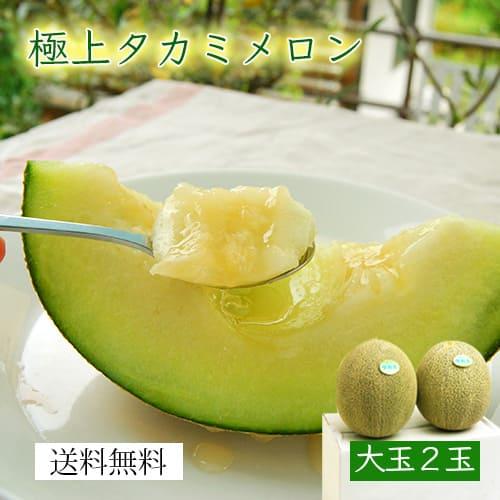 【大玉】極上タカミメロン[青肉×2玉]