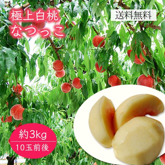 極上白桃なつっこ約3kg(10玉前後)
