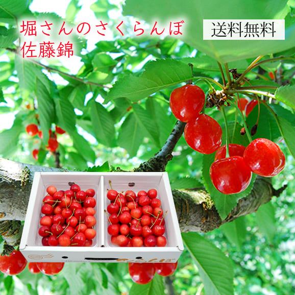 堀さんのさくらんぼ佐藤錦700gパック詰(350g×2パック)