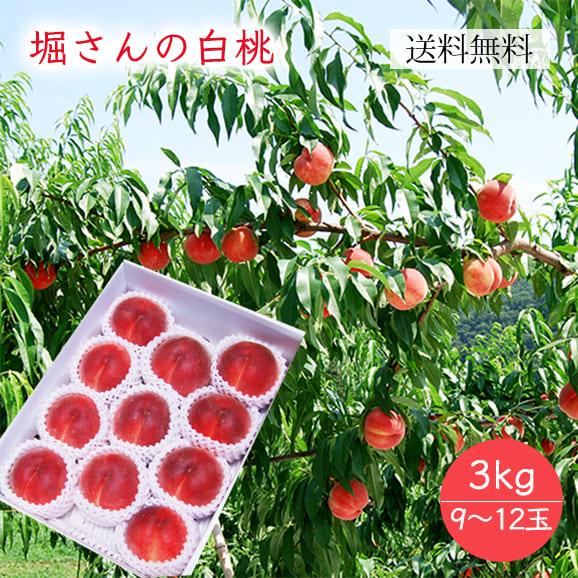 堀さんの白桃約3kg(9~12玉)