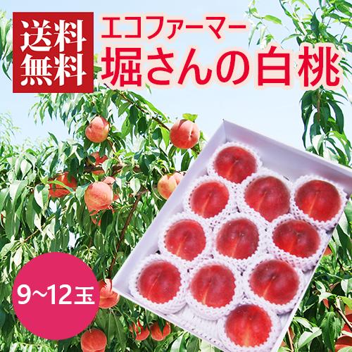 堀さんの白桃(9~12玉)