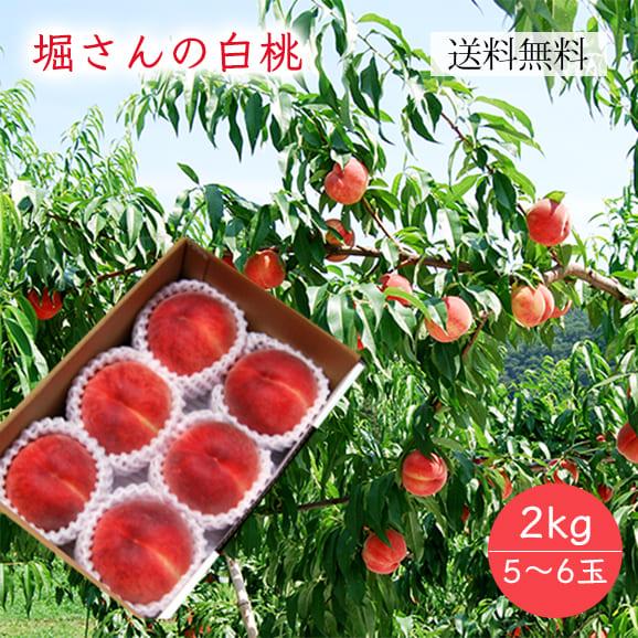 堀さんの白桃約2kg(5~6玉)