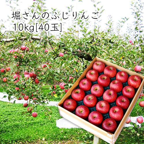 堀さんのふじりんご10kg[40玉前後]