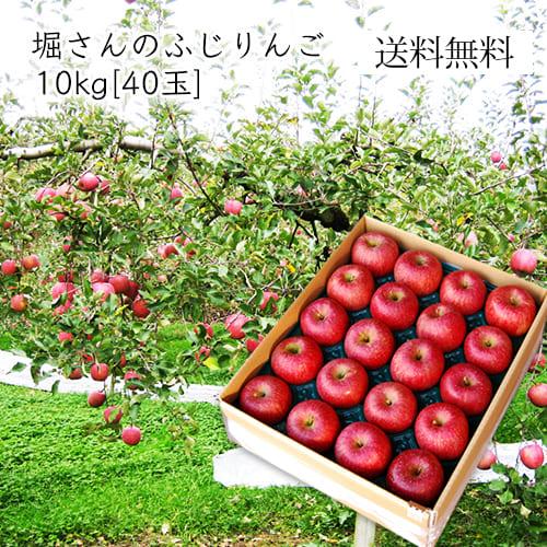 堀さんのふじりんご10kg(40玉)