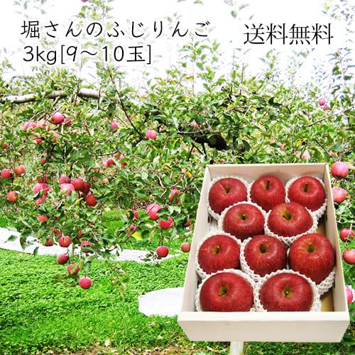 堀さんのふじりんご3kg(9~10玉前後)[化粧箱入]