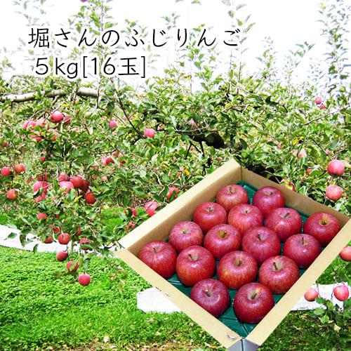 堀さんのふじりんご5kg[16玉]