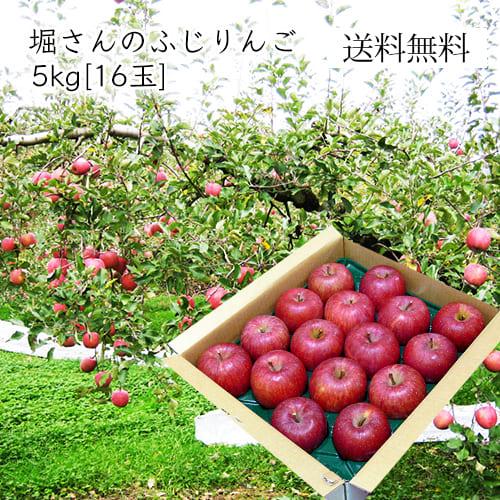 堀さんのふじりんご5kg(16玉)