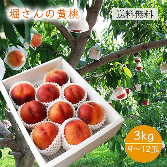 堀さんの黄桃約3kg(9~12玉)