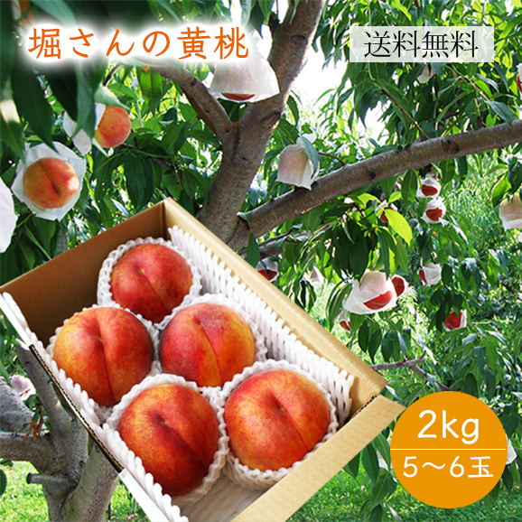 堀さんの黄桃2kg(5~6玉)