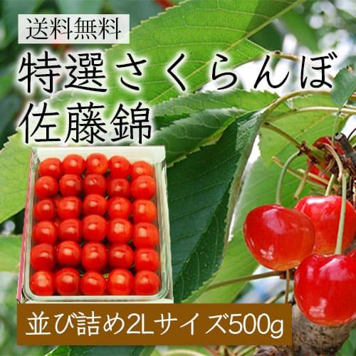 特選さくらんぼ佐藤錦[並び詰め500g/2Lサイズ]