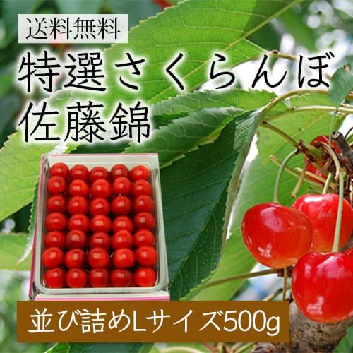 特選さくらんぼ佐藤錦[並び詰め500g/Lサイズ]