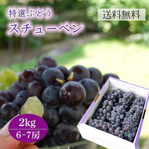 特選ぶどうスチューベン2kg(6~7房程度)