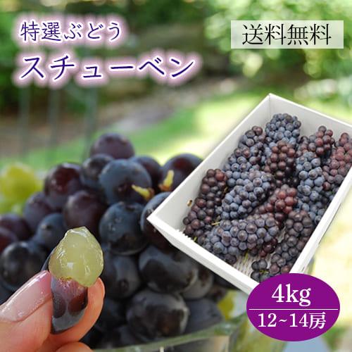 特選ぶどうスチューベン4kg(12~14房程度)