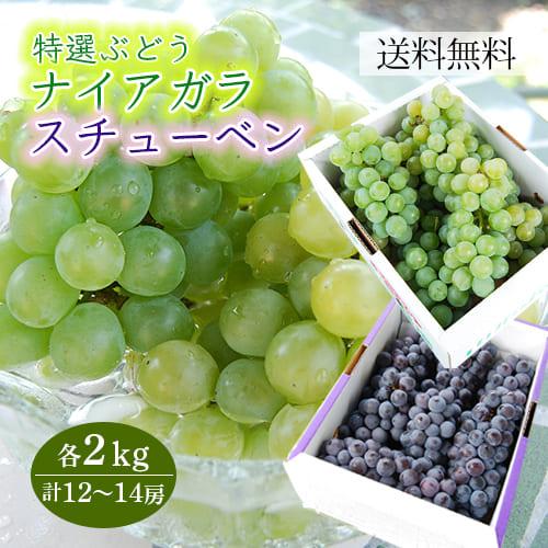 特選ぶどうナイアガラとスチューベン各2kg(12~14房)