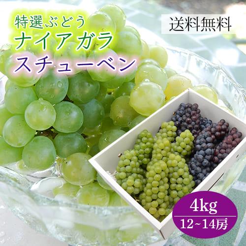 特選ぶどうナイアガラとスチューベン詰め合わせ4kg(12~14房)