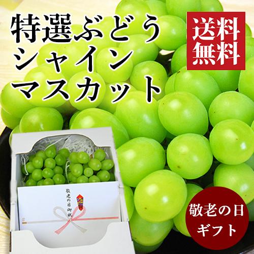 【敬老の日ギフト】特選フルーツの詰め合わせC(シャインマスカット)