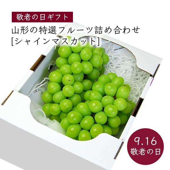 【敬老の日ギフト】山形の特選フルーツ詰合せC(シャインマスカット)