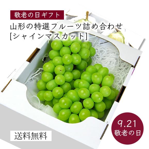 【敬老の日】山形の特選フルーツ詰め合わせC(シャインマスカット)