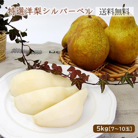 特選洋梨シルバーベル5kg(7玉~10玉)