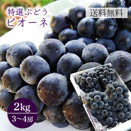 特選ぶどうピオーネ約2kg(3~4房程度)