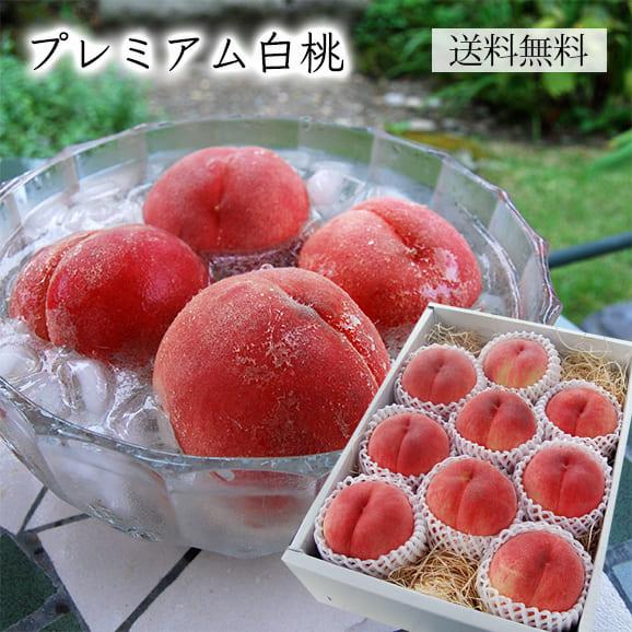 [送料無料]山形のプレミアム白桃3kg(9~12玉)
