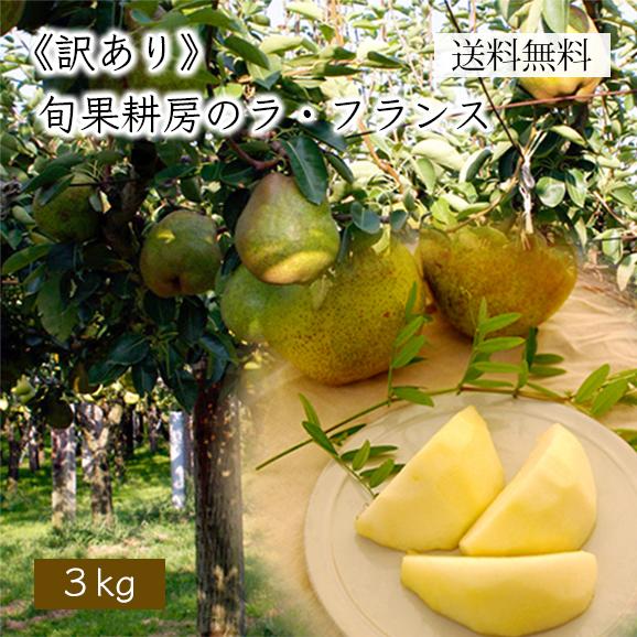 《訳あり》旬果耕房のラ・フランス3kg(7玉~12玉)