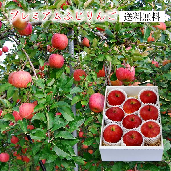 プレミアムふじりんご3kg(7~12玉)[化粧箱入]