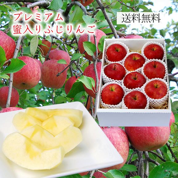 プレミアム蜜入りふじりんご約3kg(7~12玉)[化粧箱入]