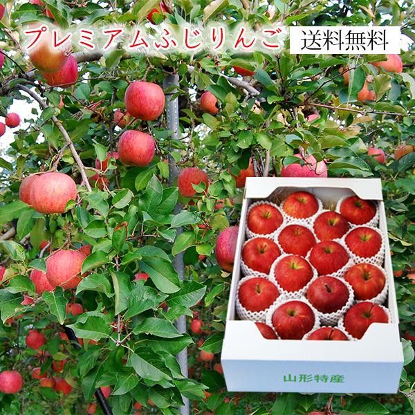 プレミアムふじりんご5kg (12~20玉)[化粧箱入]