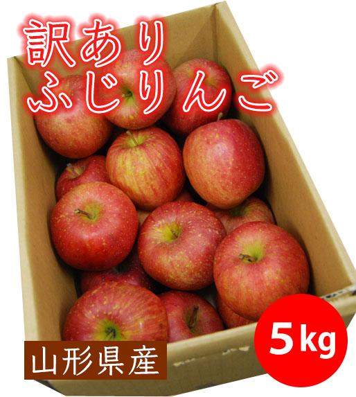 山形県産【訳あり】ふじりんご5kg