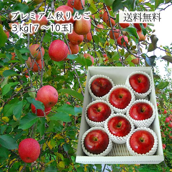 プレミアムりんご約3kg(7~10玉)[化粧箱入]