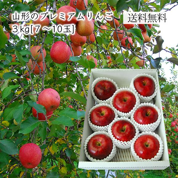 山形のプレミアムりんご 3kg(7-10玉)【化粧箱入】