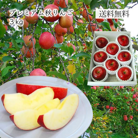 プレミアム秋りんご約3kg(7~12玉)[化粧箱入]