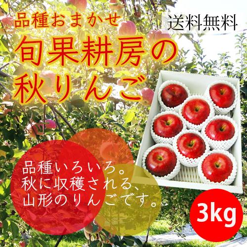 旬果耕房の秋りんご3kg(7-10玉)【化粧箱入】