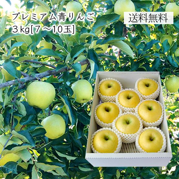 プレミアム青りんご約3kg(7-10玉)[化粧箱入]