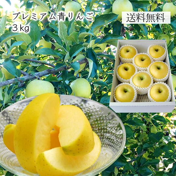 プレミアム青りんご約3kg(7~12玉)[化粧箱入]
