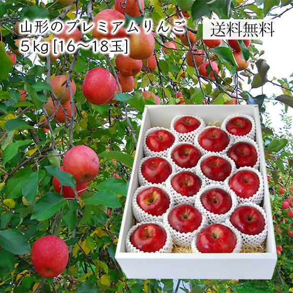 山形のプレミアムりんご 5kg(16-18玉)【化粧箱入】