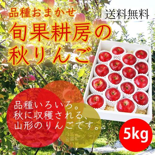 旬果耕房の秋りんご5kg(16-18玉)【化粧箱入】