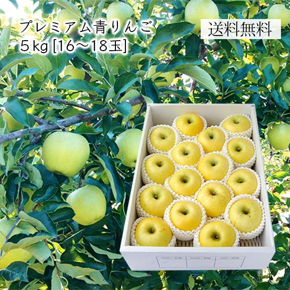 プレミアム青りんご約 5kg(16-18玉)[化粧箱入]