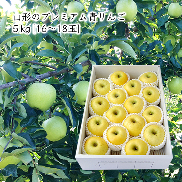 山形のプレミアム青りんご 5kg(16-18玉)【化粧箱入】