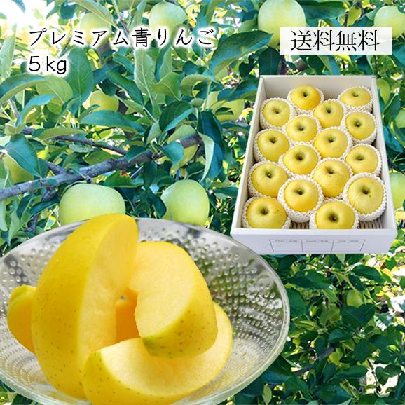 プレミアム青りんご約 5kg(16~20玉)[化粧箱入]